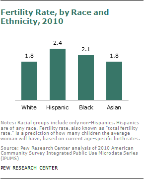 fertility rate by race & ethnicity